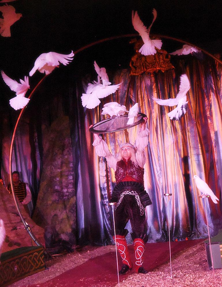 The Hooley | takis | International Performance Designer